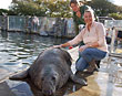 SHEILA DIBNAH MAKES A SPLASH AT THE NATIONAL SEAL SANCTUARY