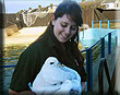 FRIENDLY FULMAR ALBERT STEALS THE SHOW AT SEA LIFE SANCTUARY