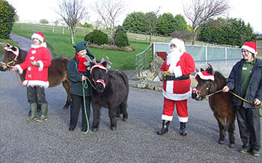 Father Christmas and his Ponies