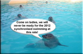 Come on ladies, we'll never be ready for the 2012 synchronised swimming at this rate!