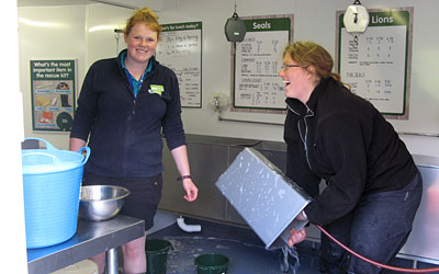 Jessica and Jessica cleaning the buckets out after feeding the resident seals