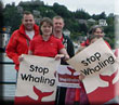 Walk for Whales - 29th June 2014