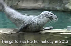 Here is a video we filmed and editted during the Easter holiday in 2013