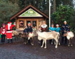 Meet Santa and His Reindeer - 13th December 2015