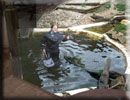 Otters - Jo, the Aquarist, cleaning the Otters enclosure