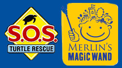 S.O.S. Turtle Rescue - Merlin's Magic Wand
