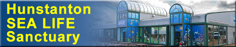 [The Hunstanton SEA LIFE Sanctuary]