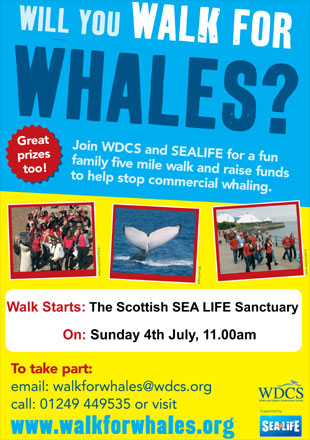 Walk for Whales local community poster